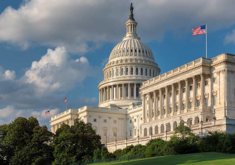 Capitol Hill Landscape