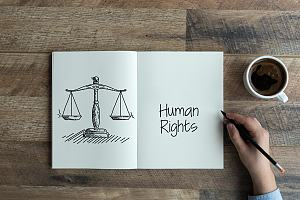 Sketch of human rights in journal